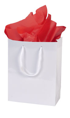 Small Glossy White Euro Tote Bags - Case of 100