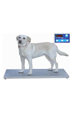 Petlift Walk-On 42″ Digital Scale