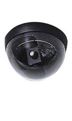 "5"" Ceiling Mount Camera - Simulated"