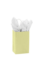 Small Ivory Paper Shopping Bags - Case of 100