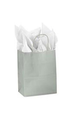Medium Silver Glossy Paper Shopping Bags - Case of 250