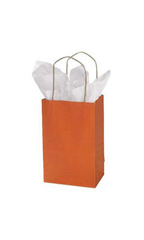 Small Burnt Orange Paper Bags - Case of 25