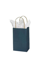 Small Navy Blue Paper Shopping Bags - Case of 100