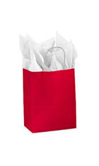 Medium Glossy Red Paper Shopping Bags - Case of 25